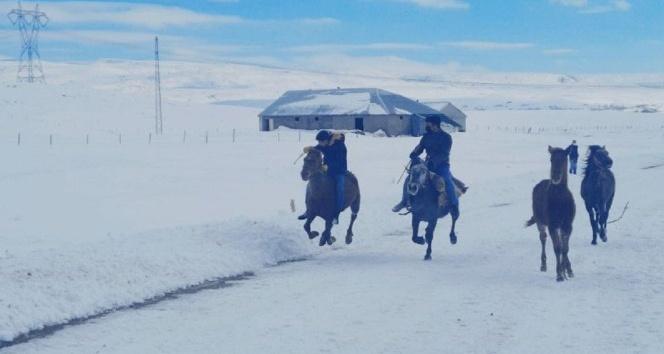 Atlar Kar Üstünde Yarışa Hazırlanıyor