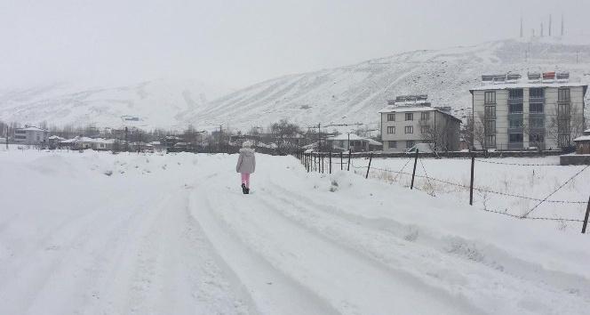 Karlıova'da Bahar Yerini Kar Yağışına Bıraktı