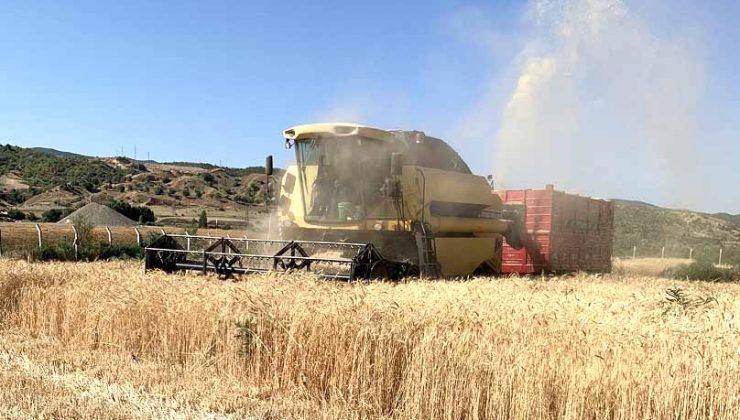 Genç Belediyesinden Buğday Hasadı