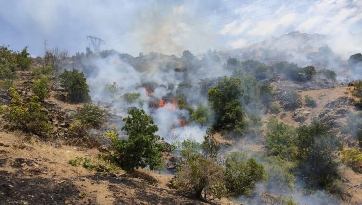 Tapantepe'de Çıkan Yangın Söndürüldü