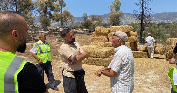 Avrupa Yetim-Der'den Antalya'daki Yangın Mağdurlarına Destek